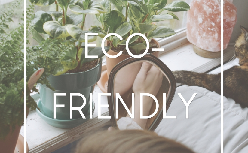 How to Be Eco-Friendly in2019