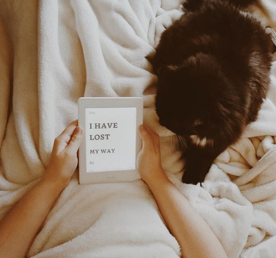 I Have Lost My Way by Gayle Forman [REVIEW]