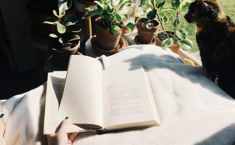 Goodreads Reading ChallengeUpdate